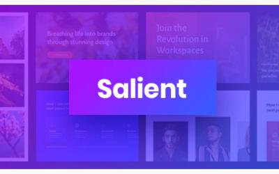 Avis sur Salient : Le thème WordPress polyvalent pour la création de sites web