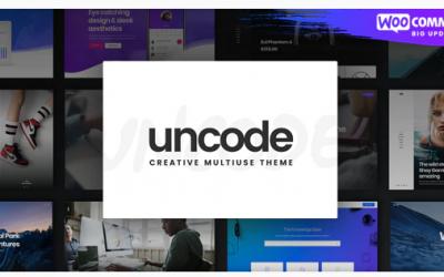 Avis Uncode : Le thème WordPress trop chargé en options ?